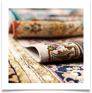 area rug cleaning fort myers