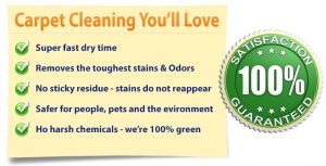 carpet cleaning fort myers - Labelle - guaranteed
