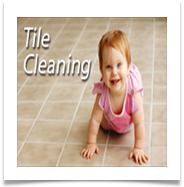 tile and grout cleaning Fort Myers labelle