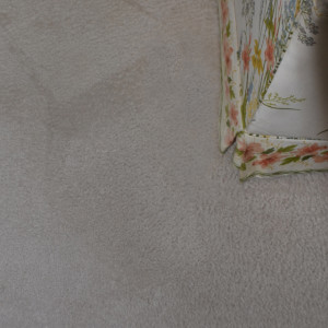 Amarillo dry carpet cleaning - pet stain after