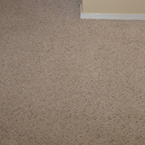 Amarillo dry carpet cleaning - carpet cleaning - dry organic carpet cleaning - stains after
