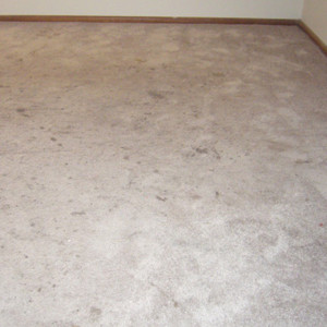 Amarillo dry carpet cleaning - carpet cleaning before