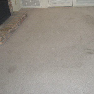 Amarillo Dry Carpet Cleaning - the power of dry