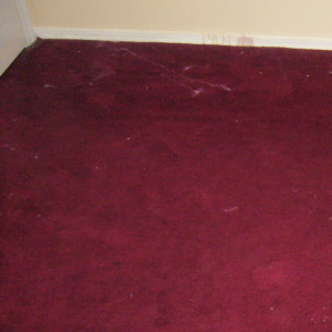 Amarillo dry carpet cleaning - before