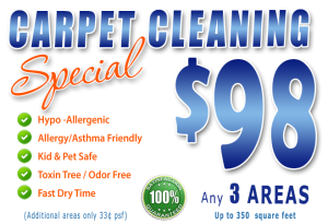 Fort Myers - Labelle - Carpet Cleaning Special