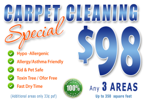 Carpet Cleaning Special - Ft. Myers & Lebelle