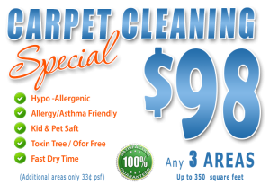 carpet cleaning special - fort myers - LABELLE, FL