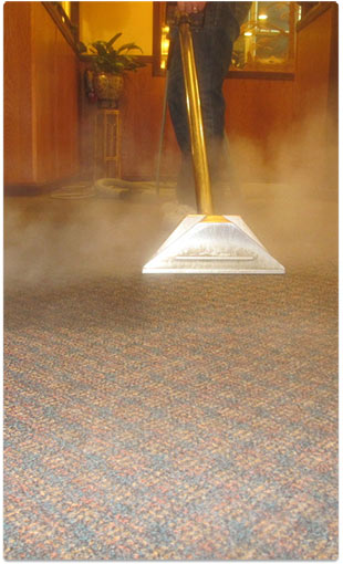 carpet steam cleaning - Mac Daddy Carpet Cleaning - Fort Myers - Labelle