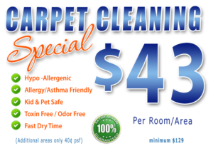 carpet and tile cleaning - labelle fl - estero fl