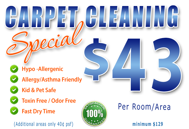 carpet cleaning special fort myers and labelle
